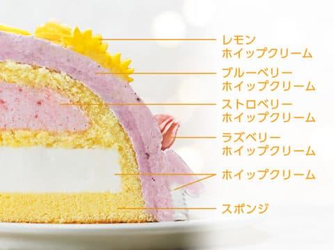 クリスマスデコレーションケーキ<ラプンツェル>がおすすめ②