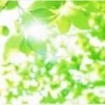 牡牛座★2021年4月ラッキーカラー★新緑のようなグリーン★ビューティー占い★